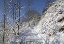 Auf Foto-Pirsch im Winter